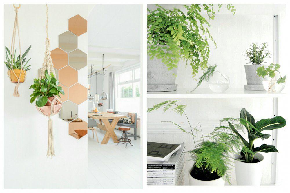 Idealne wnętrze czyli wymarzone rzeczy do mojej kuchni