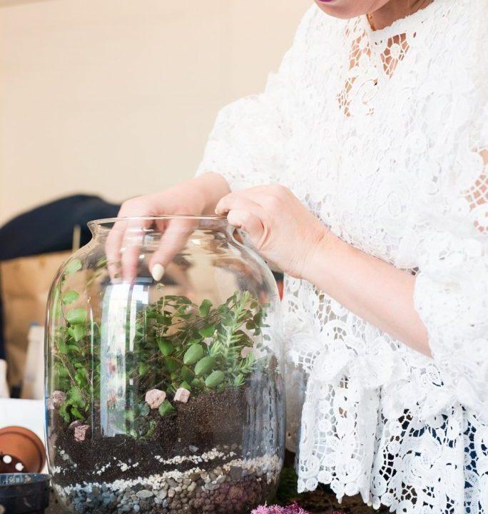 Jak stworzyć zieleń w słoju krok po kroku Nasadzenia w szkle z BIERZgoBUKIET i Instytutem Dizajnu w Kielcach 17
