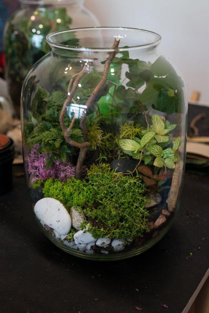 Jak stworzyć zieleń w słoju krok po kroku